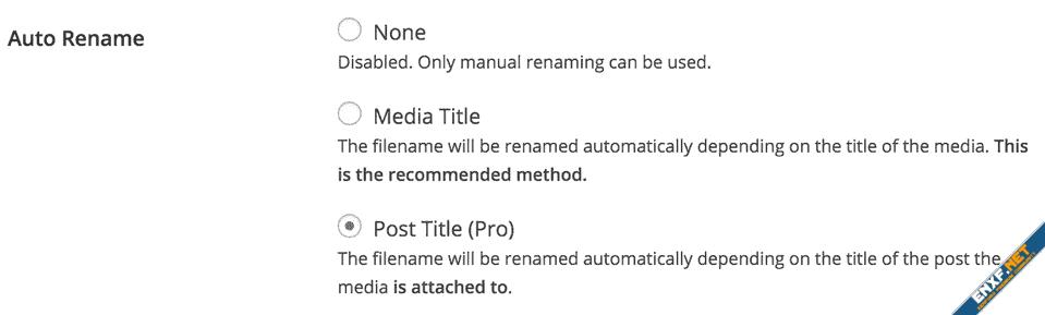 file-renaming-mode.png