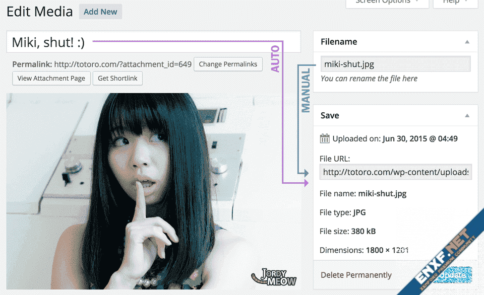 media-file-renamer-edit-media.png